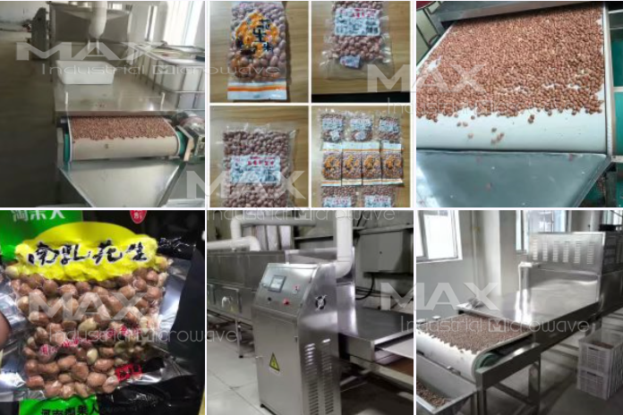 Industrial Microwave Machine for Peanut