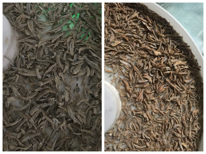 How to Make the Crunchy Dried Fish