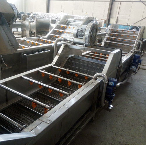 Fruit and Dried-good Clean and high pressure wash machine