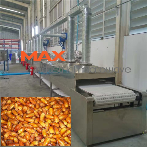 Date Sterilization Machine