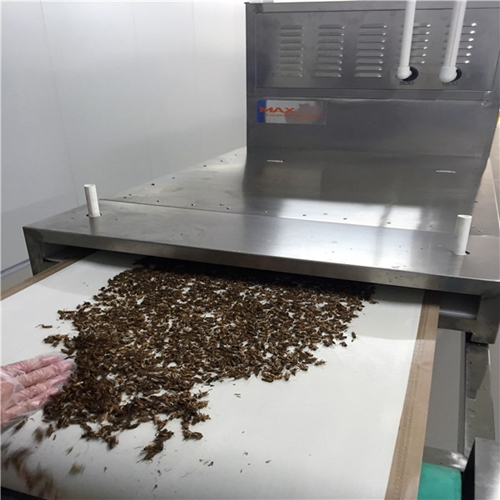 Microwave Drying Insects