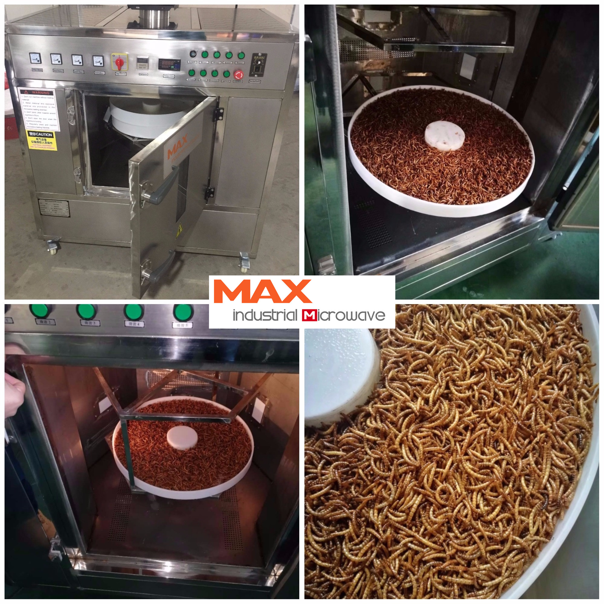 mealworm drying