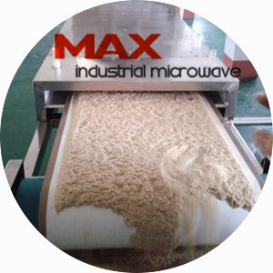 Rice Bran Microwave Drying and Pasteurization
