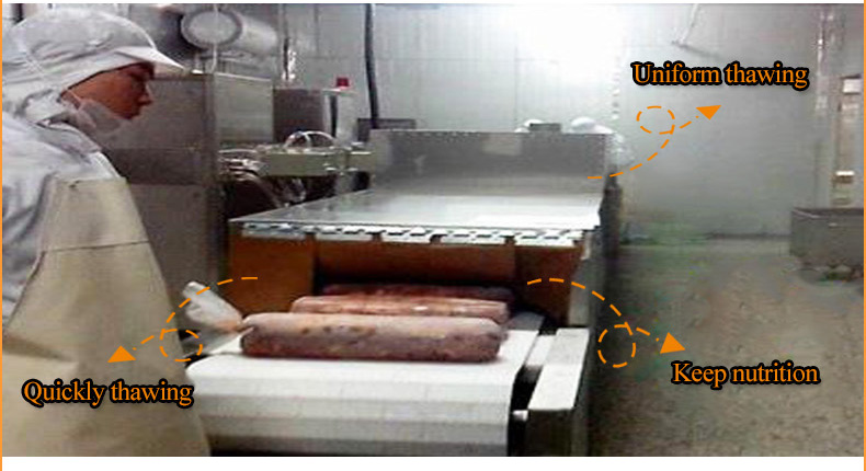 Meat Defrost Machine